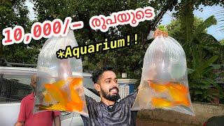 10,000/- രൂപയുടെ പുതിയ അക്വാറിയം | New Aquarium For my 20,000/- Rs worth Arapaima
