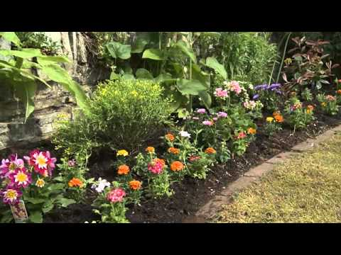 where to plant what in a garden