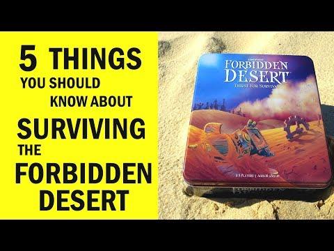 Forbidden Desert Board Game Review & Runthrough