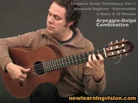 Demo of Flamenco Guitar Techniques Part 1...