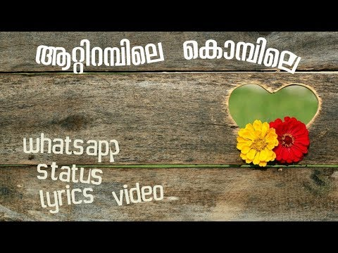 Aattirambile Kombile//malayalam Whatsapp Status//lyrics Video//download//