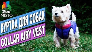 Куртка для собак Collar Airy Vest | Обзор куртки для собак | Collar Airy Vest Review