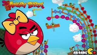 Angry Birds Seasons: Leprechaun Day! Walkthrough 3 Stars