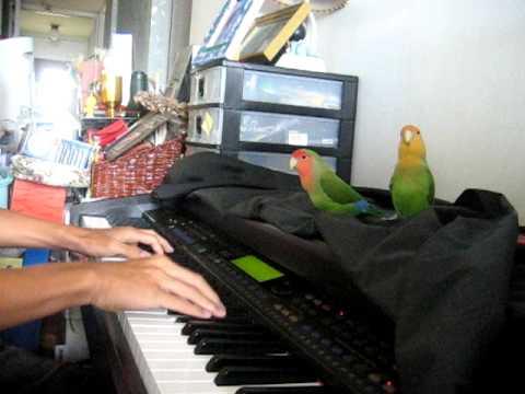 boys like girls - love drunk (piano)