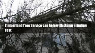 stump grinding cost