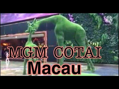 MGM Spectacle Cotai|  MACAU 2021| yel bloum vlogs