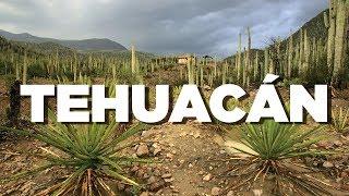 Baixar Descubre la magia de Tehuacán en Puebla