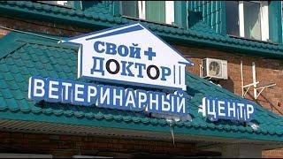 """В Уссурийске открылась ветеринарная клиника всероссийской сети """"Свой доктор"""""""