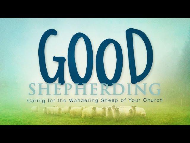 Good Shepherding-Part 3