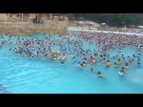 Yongin Caribbean Bay Waterpark, 캐리비안베이 파도풀