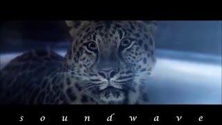 Ludovico Einaudi - Timelapse (Afterlife Remix)