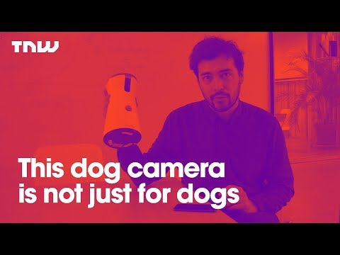 FURBO: This dog camera is not just for dogs