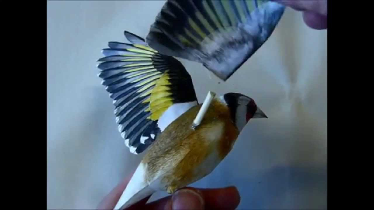 Papercraft Incredibly realistic 3d papercraft bird