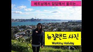 [해외 생활] 뉴질랜드 워킹홀리데이 때 - 1 (그냥 …
