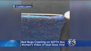 SEPTA Speaking Out After Bed Bugs Discovered On Bus