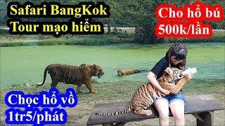 Kinh hãi loại hình du lịch cho hổ sư tử vồ tại Safari Bangkok với giá siêu chát