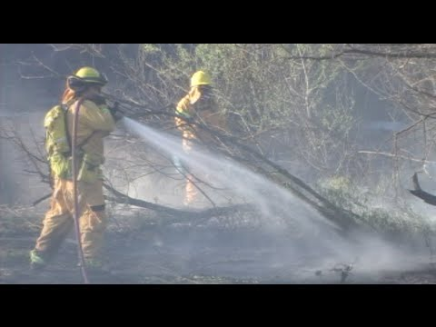 Firefighters Battle Huge Fire Along The San Joaquin River - News Story