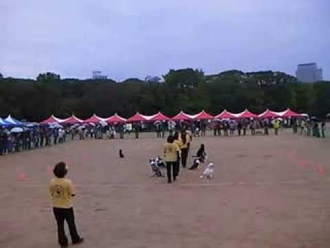 2013 1110 event osaka