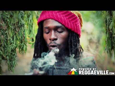 Jesse Royal - Gimmie Likkle / Finally [Official Video 2015]