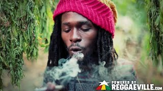 Jesse Royal - Gimmie Likkle / Finally [Official Video 2015] - Stafaband