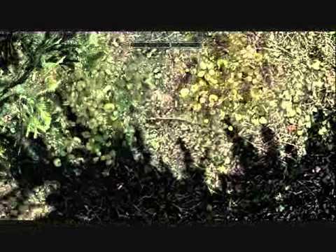 Skyrim Invisible Chest Solitude YouTube