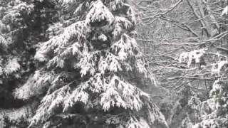 Cumberland Mountain Deer Race - Dave Macon