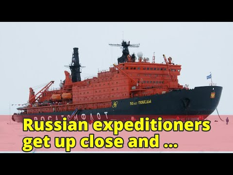 Russian expeditioners get up close and personal with gigantic nuclear icebreaker