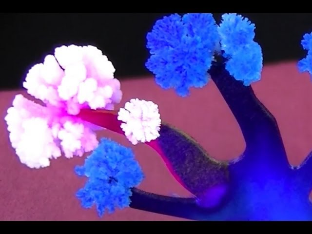 How Do Sugar Crystals Form? - Lessons - Tes Teach