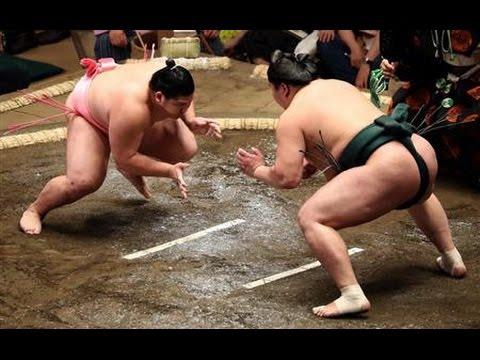 SUMO May 2016- Ura All Matches 新十両 宇良 平成28年5月場所 (全)