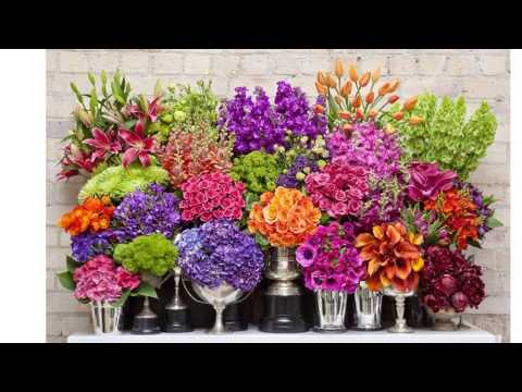 Florist In Auckland New Zealand | Auckland Florist