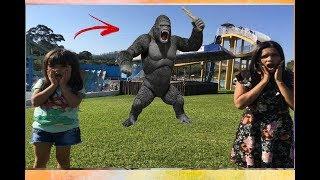 Kids and monkey, Johny Johny Yes Papa-UM GORILA NO PIQUENIQUE