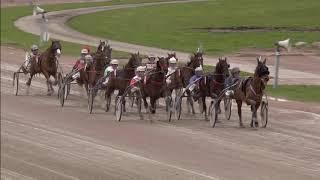 Vidéo de la course PMU CHAMPIONNAT D'HIVER (FINAL TROTTEUR FRANCAIS DIAMOND CHALLENGE)