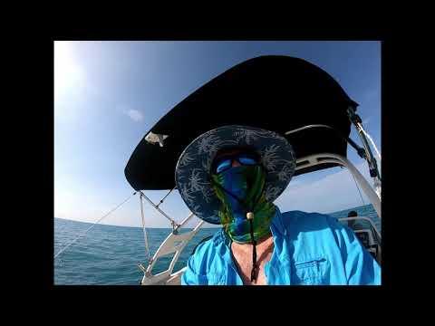 Yellowtail Snapper Fishing In Marathon Key