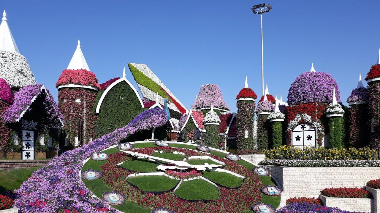 Miracle Garden Disney 2018 2019 Dubai Jardines Increibles En Dubai Youtube