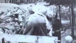 HERTA BOTHE.Mujeres Nazis.Atasco en el Purgatorio.pdf fanzine