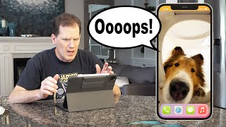 'Ooops!'  Biscuit's New Phone DISASTER! ☎ A Biscuit Talky on Cricket 'the sheltie' Chronicles