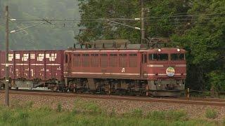 【EF510】【EF81】 北陸本線を走る貨物列車 2016年5月