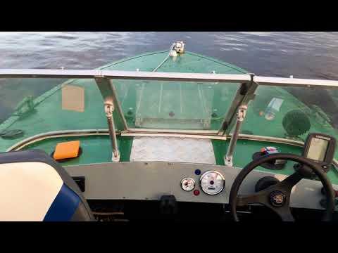 Лодка ПРОГРЕСС - 2 с мотором Mercury F30 ELPT EFI.
