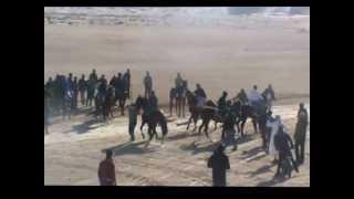سباق الخيول في دوز 31_1_2013