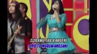 Single Terbaru -  Deviana Safara Sonata Kangen Dangdut