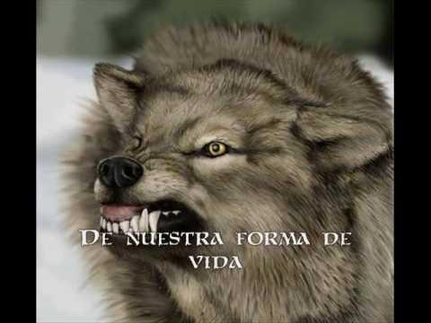 Ain't Your Fairytale - Sonata Arctica (Subtitulos Español)
