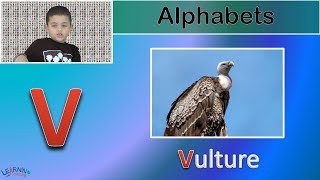 Learn the upper-case English alphabets (letters)