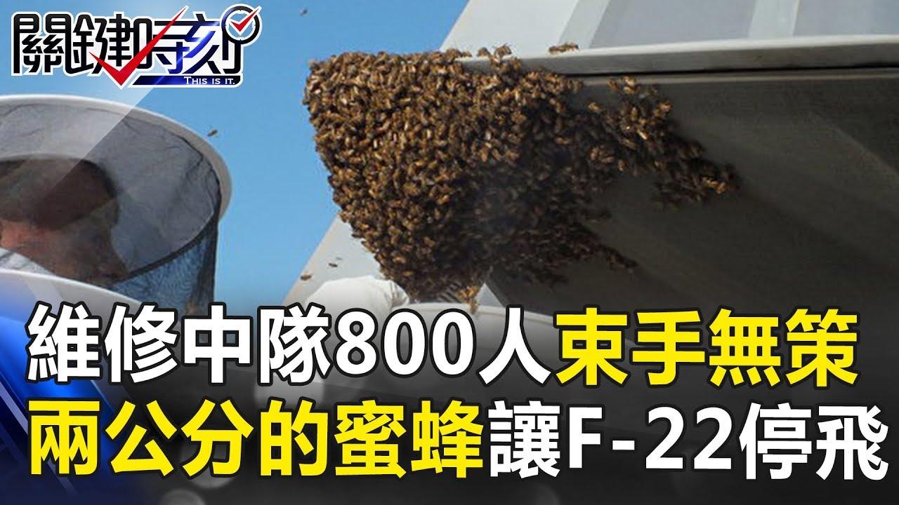 Download 維修中隊800人束手無策 兩公分大的蜜蜂竟讓F-22停飛!? 關鍵時刻 20180920-5 黃創夏 朱學恒 劉燦榮