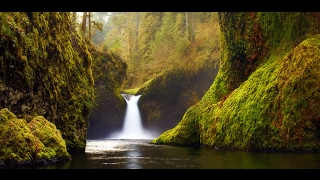 Relaxing Music: Peaceful Music, Instrumental Music,