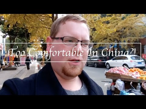Are Expats Too Comfortable In China? Being an Expat in China