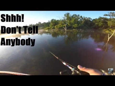 Lake Fork Bass Fishing: Why Am I Sharing This