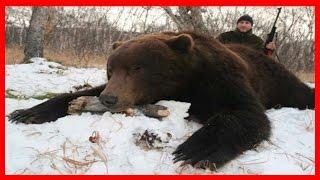 Бой с медведем / Рассказ из первых уст бывалого ОХОТНИКА