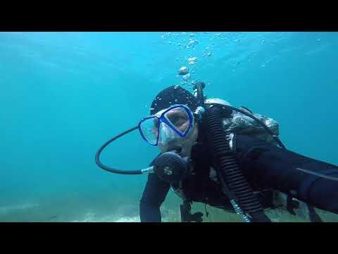 Independent diver .. Sea explorer