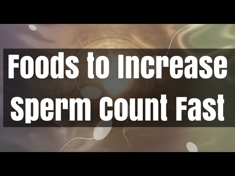 top 10 foods to increase count and quality