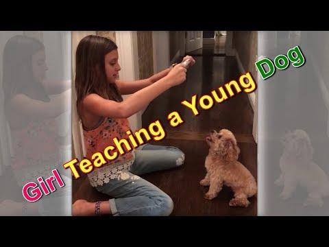 Paula Faris Teaching a Young Dog || New Tricks - Circus Dog